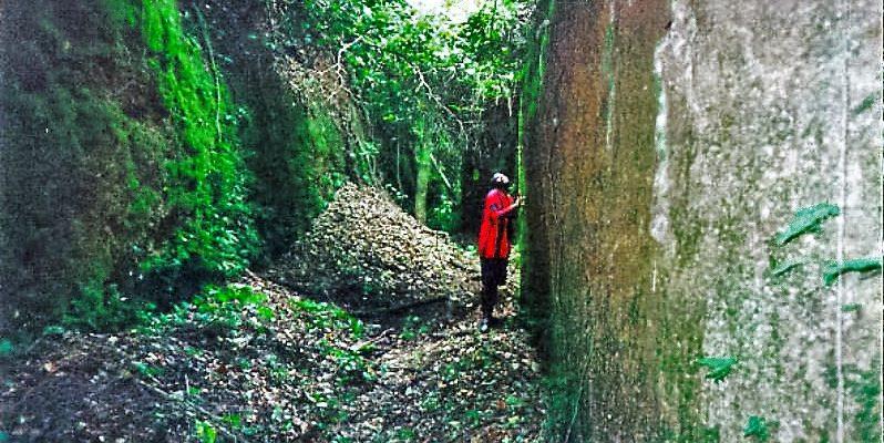 Benin Moat 2